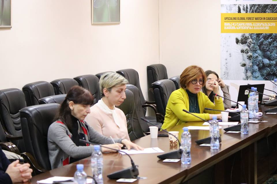 """REC Caucasus Organizes Validation Workshop Within the Frames of the Project """"Upscaling Global Forest Watch in Caucasus Region"""