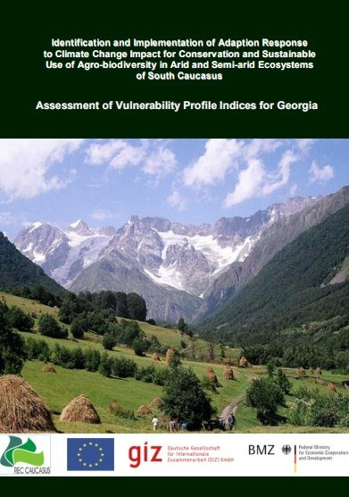 Assessment of Vulnerability Profile Indicies For Georgia