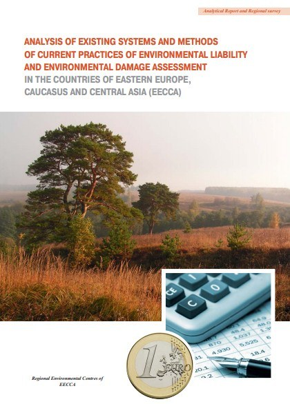 Analysis of existing systems and methods of current practices of environmental liability and environmental damage assessment
