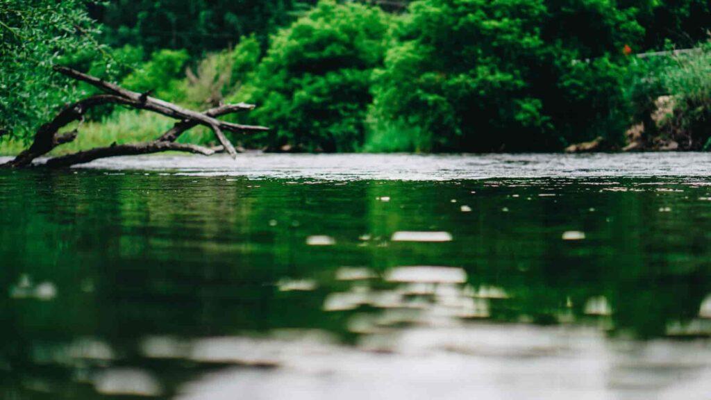 Development of Draft River Basin Management Plan for Khrami/ Debed River Basins in Georgia