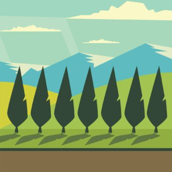 Windbreaks – Investments in the future